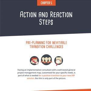 ERP Implementation Chapter V