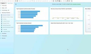 SAP Business One 9.2 ToolTips Video